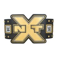 WWE NXT Championship - Replica Title Belt