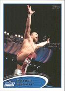 2012 WWE (Topps) Daniel Bryan 6