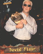 1999 WCW Embossed (Topps) David Flair 45