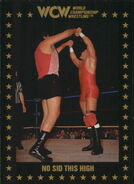 1991 WCW Collectible Trading Cards (Championship Marketing) No Sid This High 64
