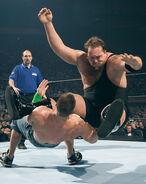 WrestleMania 20.4