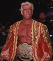 Ric Flair WCW Championship 4