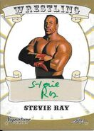 2016 Leaf Signature Series Wrestling Stevie Ray 78