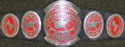 OVW Southern Tag Team Championship