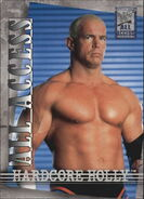 2002 WWF All Access (Fleer) Hardcore Holly 23