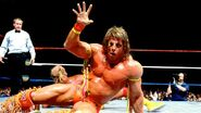 Ultimate Warrior59