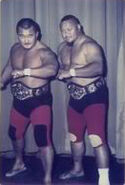 Mr Fuji and Professor Tanaka