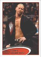 2012 WWE (Topps) Curt Hawkins 79