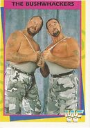 1995 WWF Wrestling Trading Cards (Merlin) Bushwhackers 21