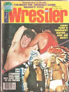 TERRY FUNK-JERRY LAWLER