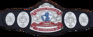 UWF Tag Team Championship HQ