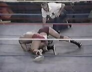 WWF The Wrestling Classic.00021