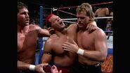 SummerSlam 1993.00054