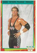 1995 WWF Wrestling Trading Cards (Merlin) Bob Holly 25