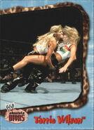 2002 WWE Absolute Divas (Fleer) Torrie Wilson 41