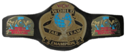 WCW World Tag Team Championship1