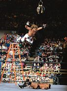 Ladder Match