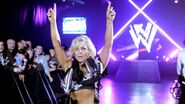 WrestleMania Revenge Tour 2012 - Newcastle.6