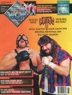 WCW Magazine - November 1993