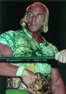 Superstar Billy Graham 17