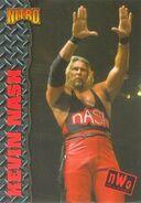 1999 WCW-nWo Nitro (Topps) Kevin Nash 43