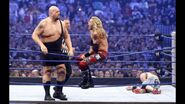 WrestleMania 25.45