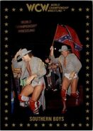 1991 WCW Collectible Trading Cards (Championship Marketing) Southern Boys 45