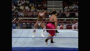 SummerSlam 1993.00056