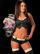 Brie Bella Divas Champion