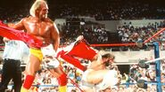 Hulk Hogan 48