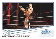 2013 WWE (Topps) Antonio Cesaro 47