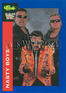 1991 WWF Classic Superstars Cards Nasty Boys 57