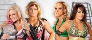 TLC2010..Divas Tag Match