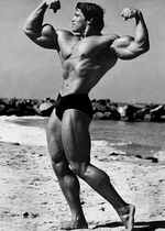 Arnold schwarzenegger prime