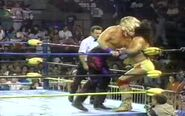 Fall Brawl 1993.00011