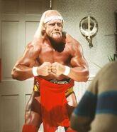 Hulk Hogan 33