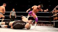 WrestleMania Revenge Tour 2013 - Dublin.14
