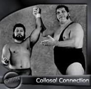 Colossal Connection 1