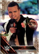 2016 WWE (Topps) Then, Now, Forever Epico 119