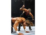 WrestleMania 22.35