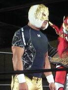 Tiger Mask IV 1