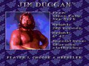 WWF Royal Rumble (JUE) -!-020