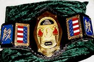 NWA National Champion (old2)