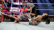 Royal Rumble 2017.31
