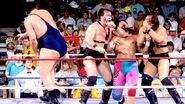 Royal Rumble 1990.17