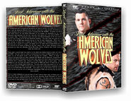 American Wolves Shoot Interview