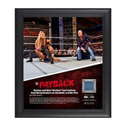 Natalya Payback 2016 15 x 17 Framed Ring Canvas Photo Collage Plaque