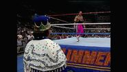 SummerSlam 1993.00027