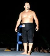 Mr-Fuji.17