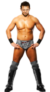 Themiz by wwe12-d4xvyzj